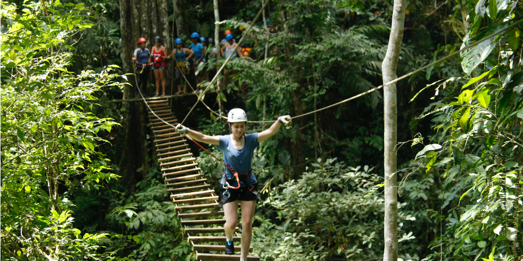 A volunteer wearing a harness, walking across a suspension bridge in the jungle.