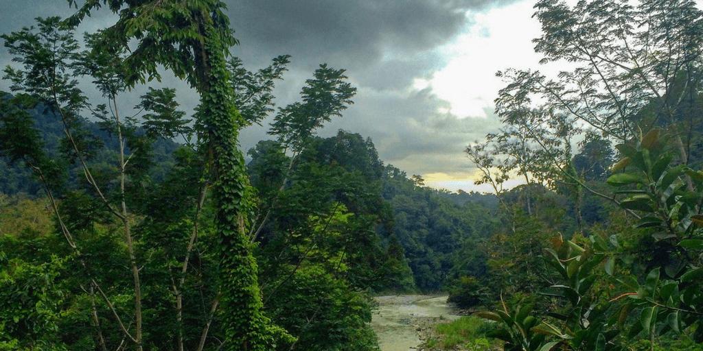 Volunteer in Costa Rica over spring break 2018 with GVI.