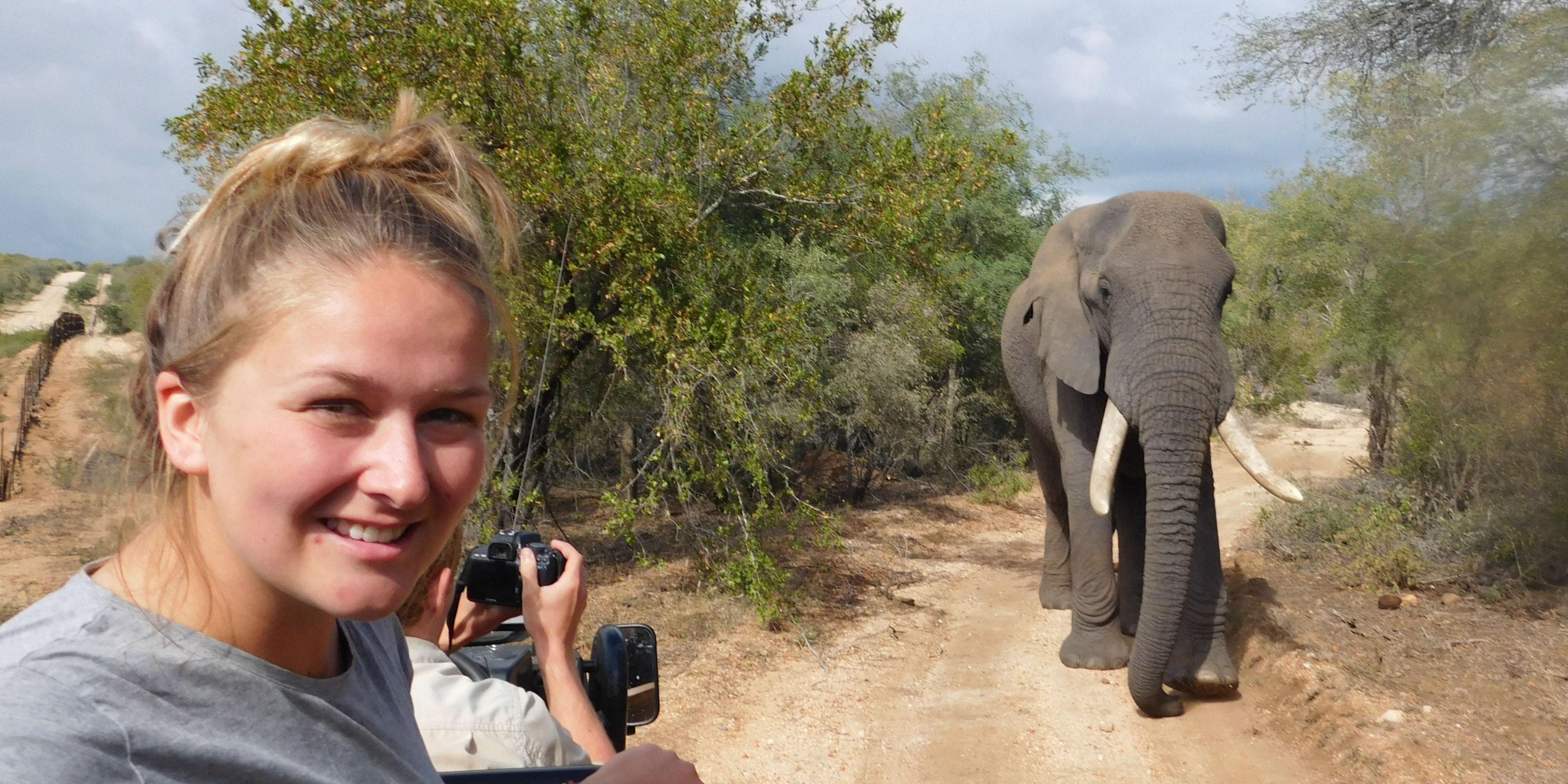 volunteer with animals in africa