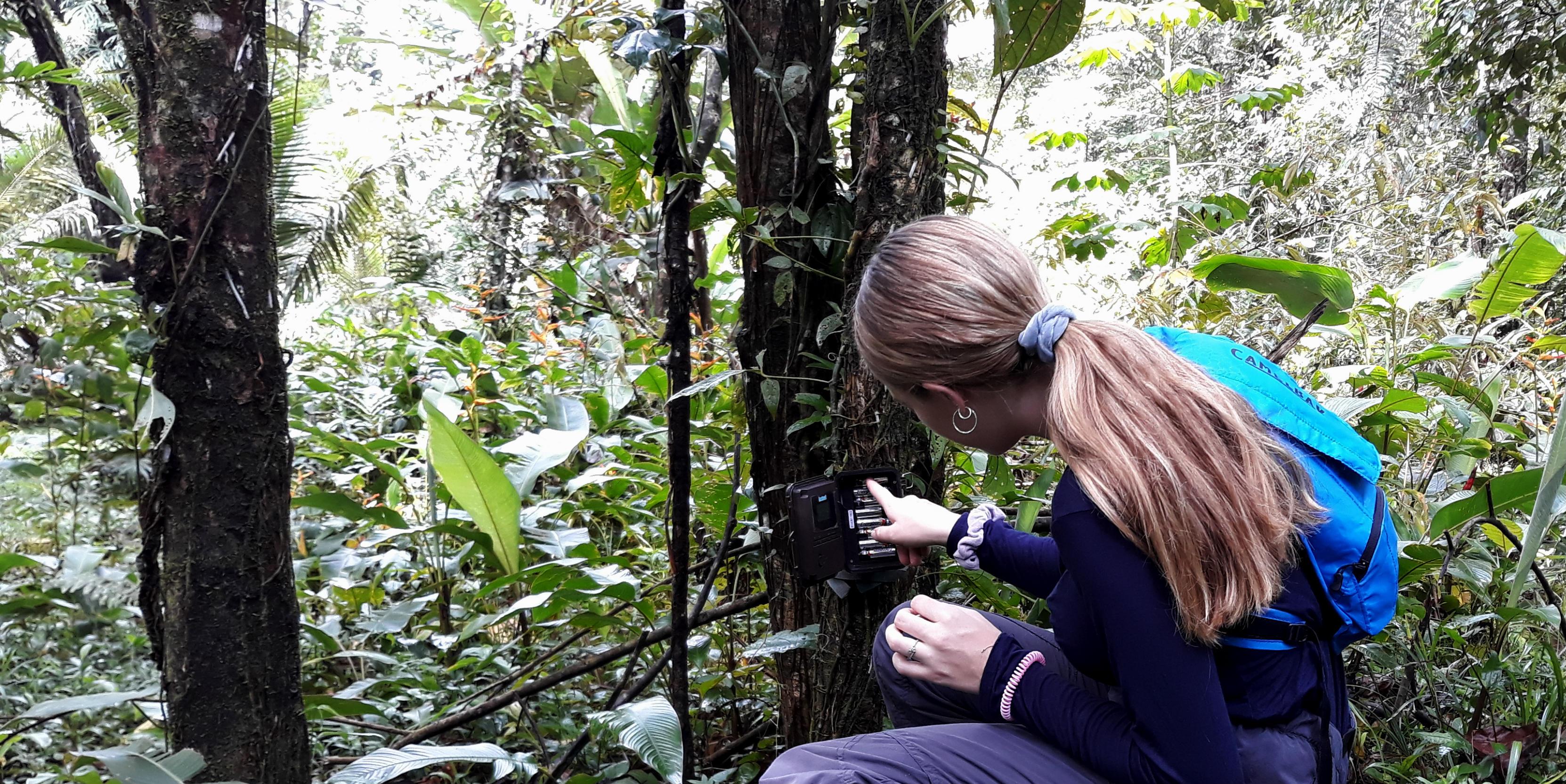 Volunteer with wildlife