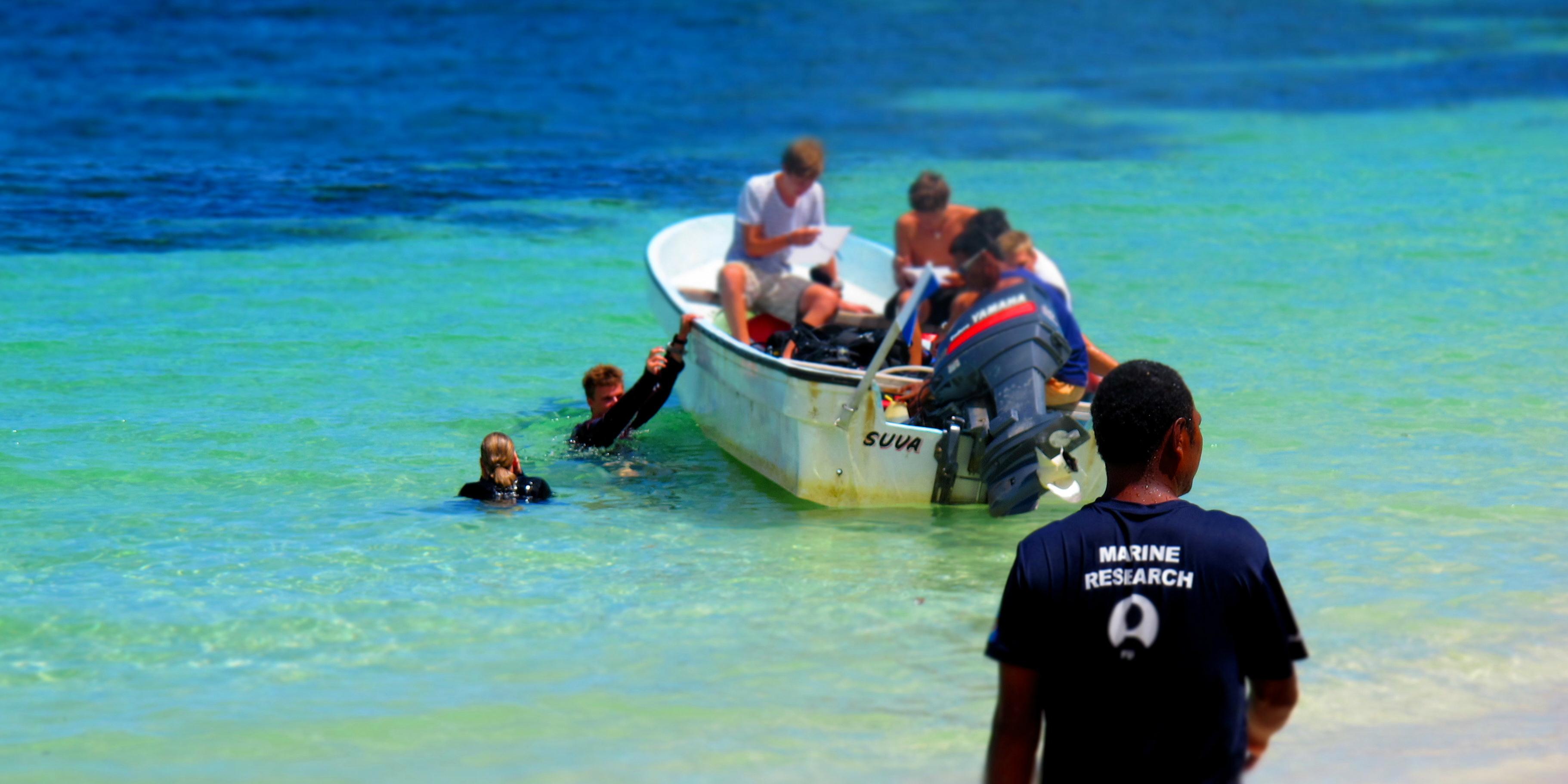 marine conservation volunteer