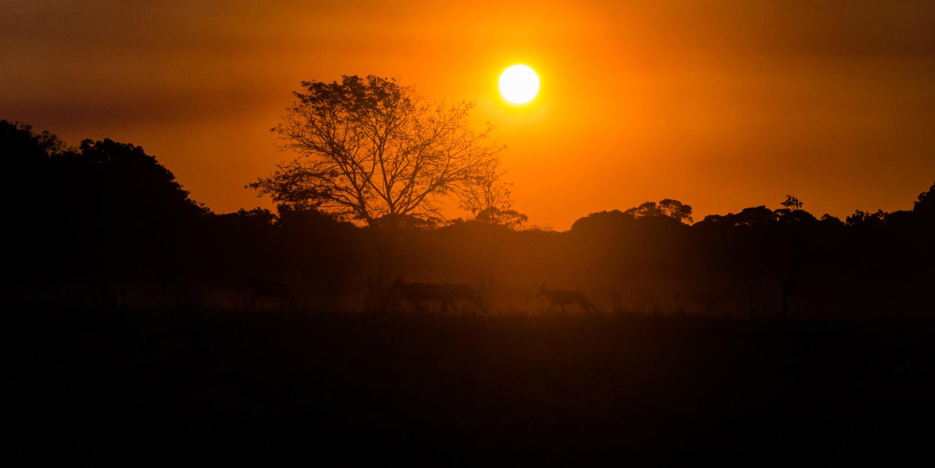 zambia tourism