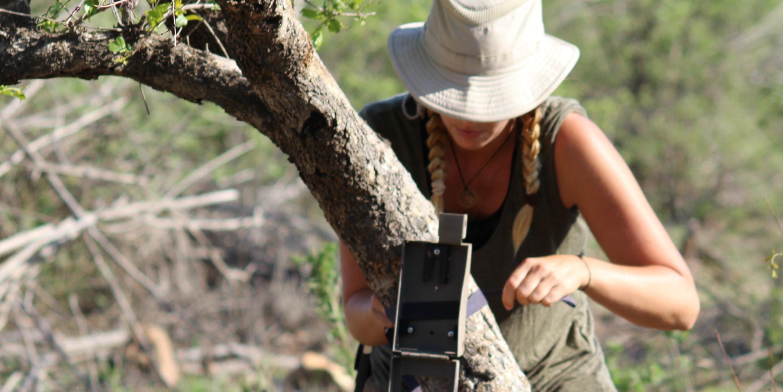 conservation internships abroad