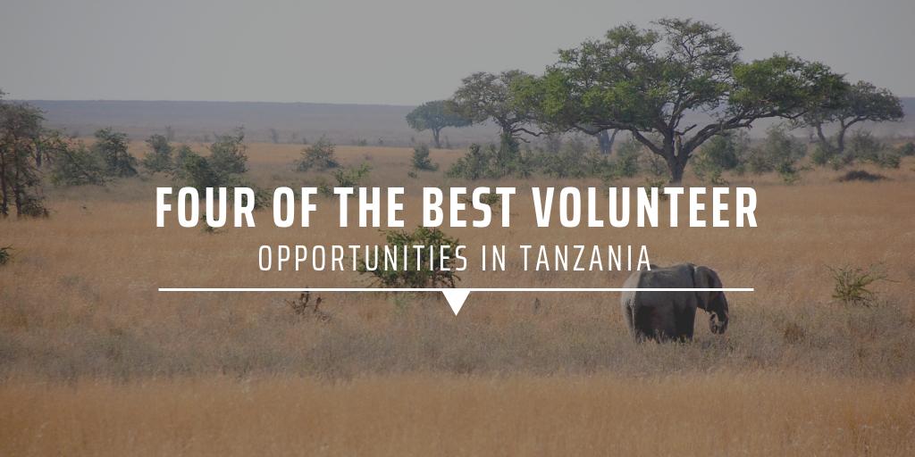 OPPORTUNITIES IN TANZANIA