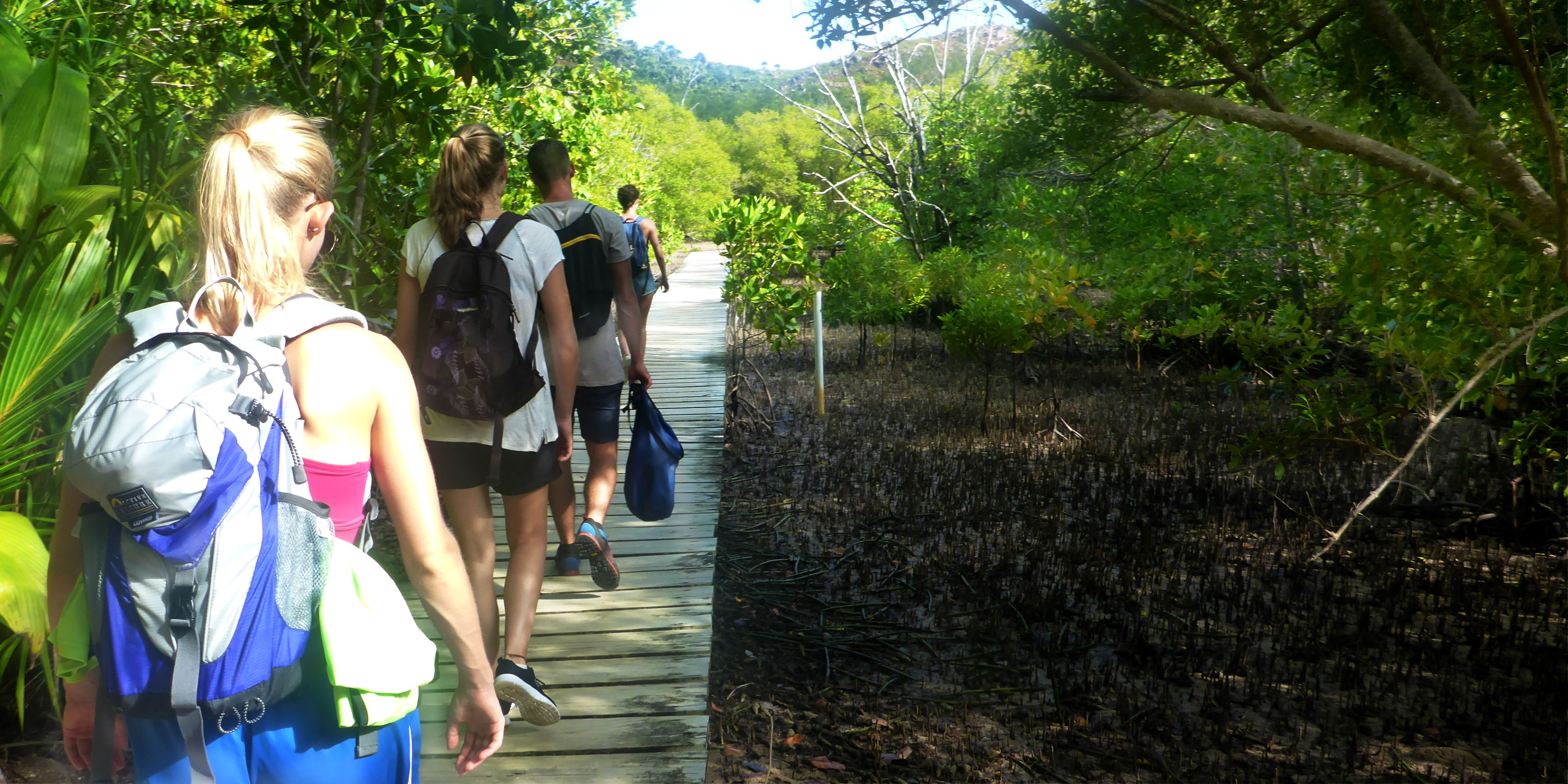 GVI participants walk past mangrove forests on Curieuse Island.