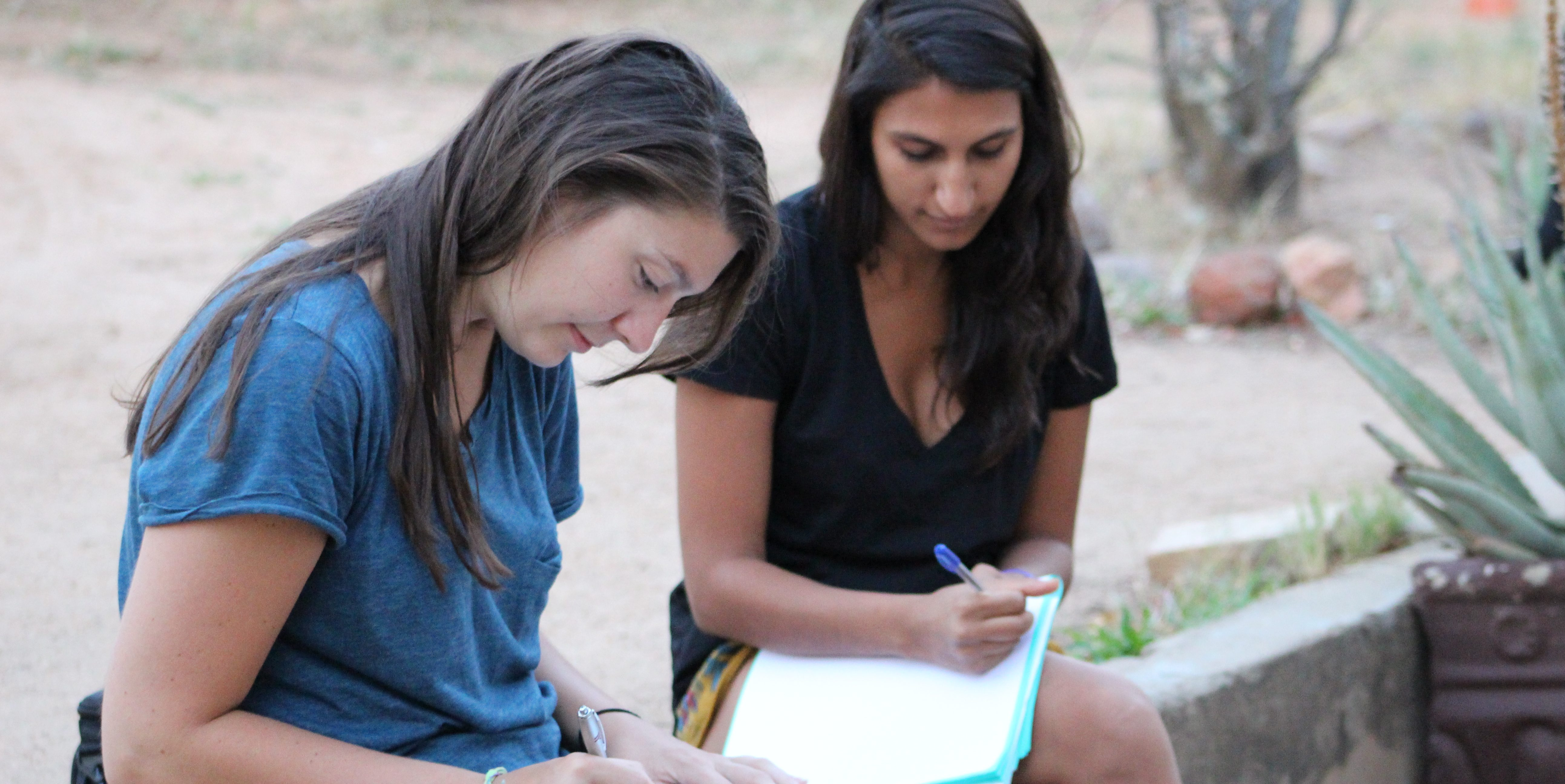 Wildlife volunteers make notes on the species they have learned about while on an African wildlife conservation project.