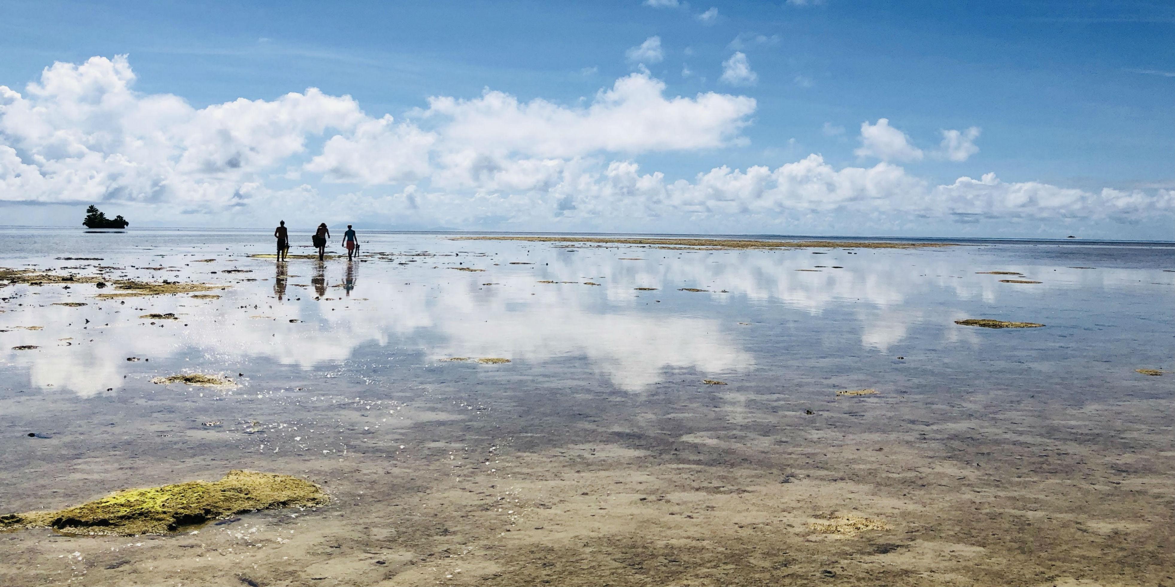 GVI participants walk toward the ocean while working to gain their PADI divemaster.