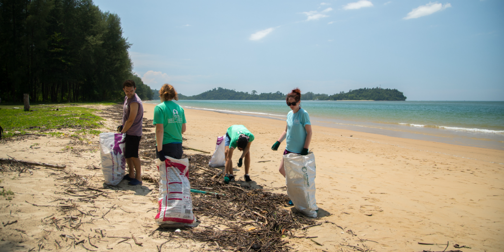 volunteers conducting a beach cleanup