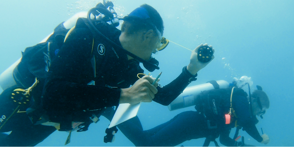 two divers communicating underwater