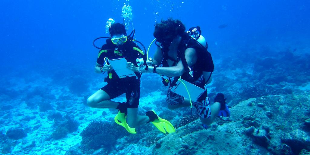adventure travel scuba divers