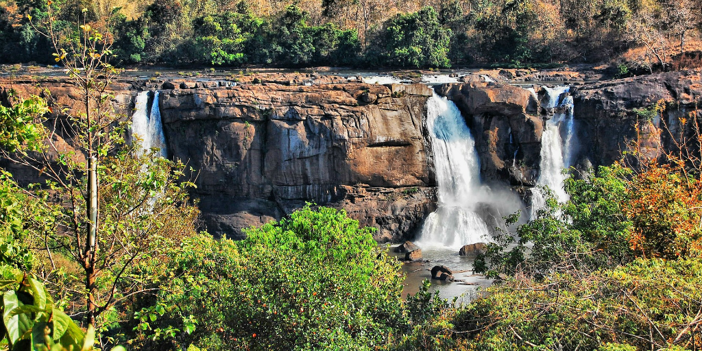 When you volunteer in Kochi, you can take a trip to the Athirappilly waterfalls to spend the weekend in treehouse accomodation.