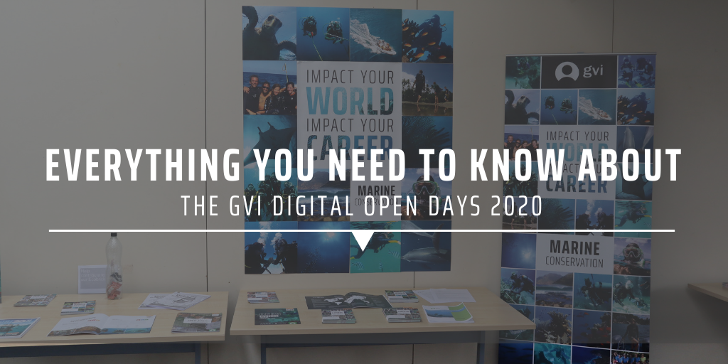 Everything you need to know about the GVI Digital Open Days 2020