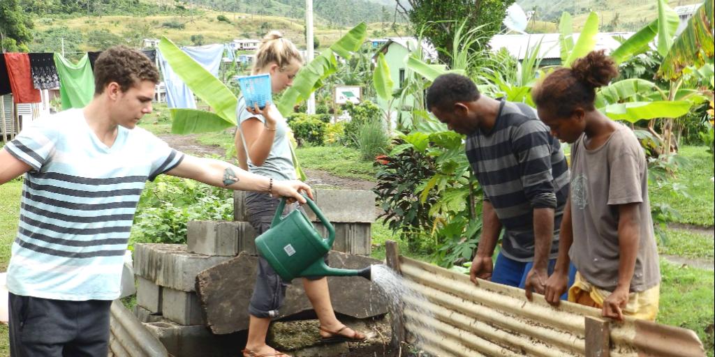 Volunteers working in a food garden.