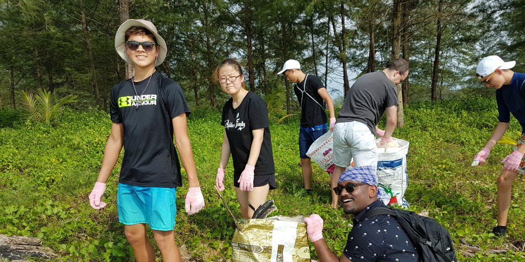 Volunteers picking up litter in the forest.