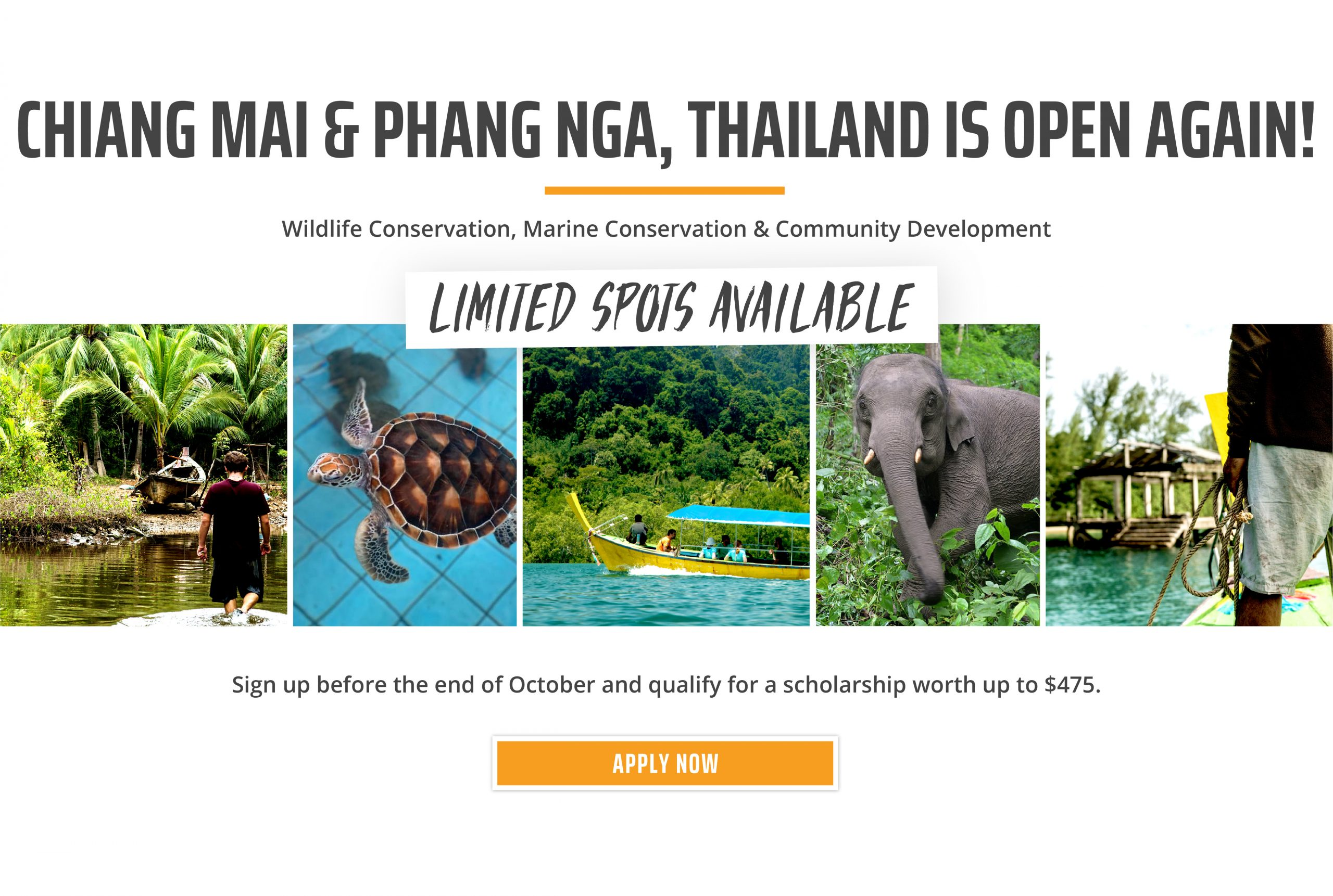 USA Thailand Reopening