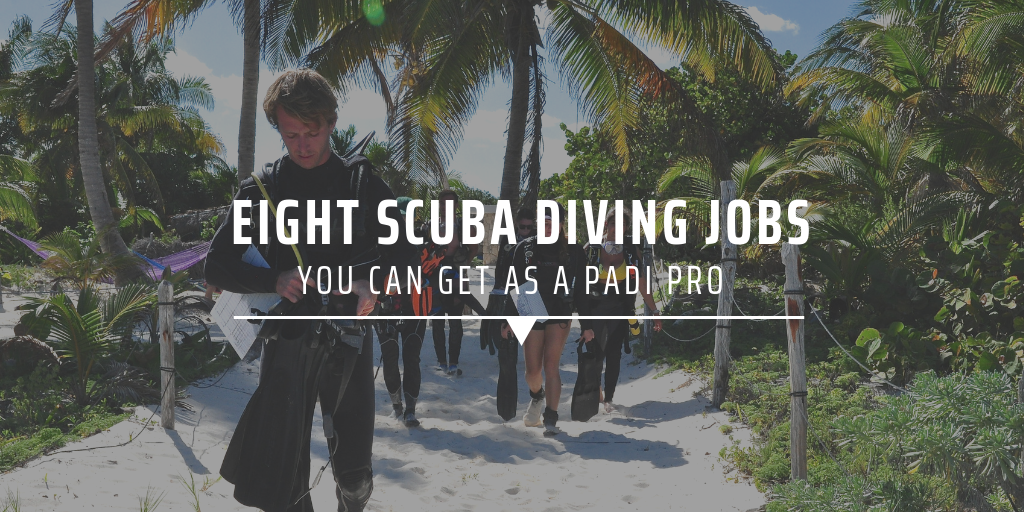 Eight scuba diving jobs you can get as a PADI pro