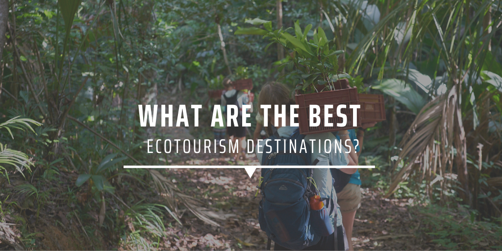 What are the best ecotourism destinations