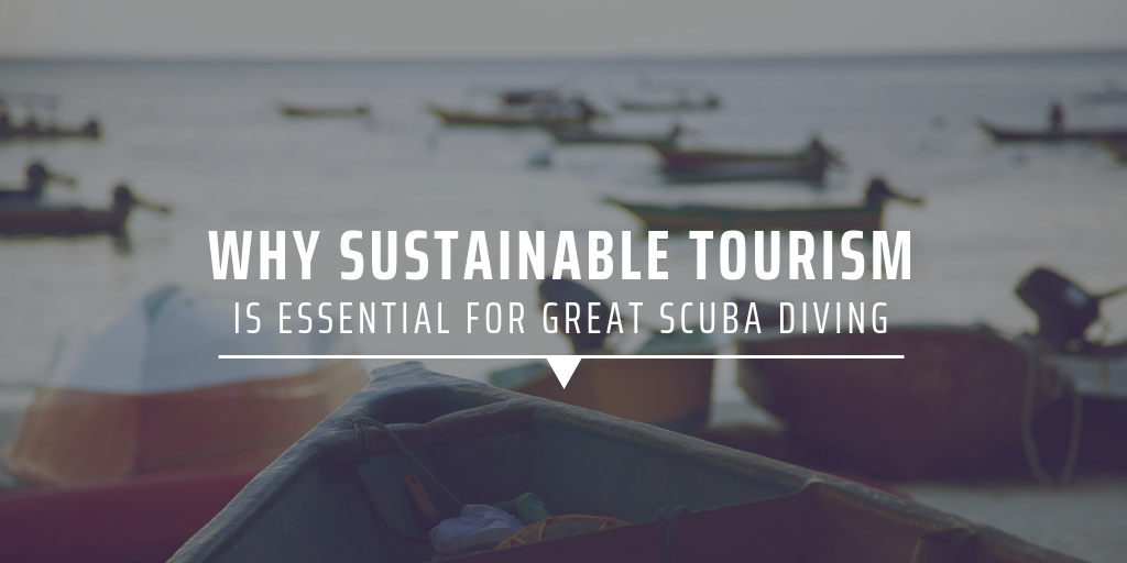 Why sustainable tourism is essential for great scuba diving